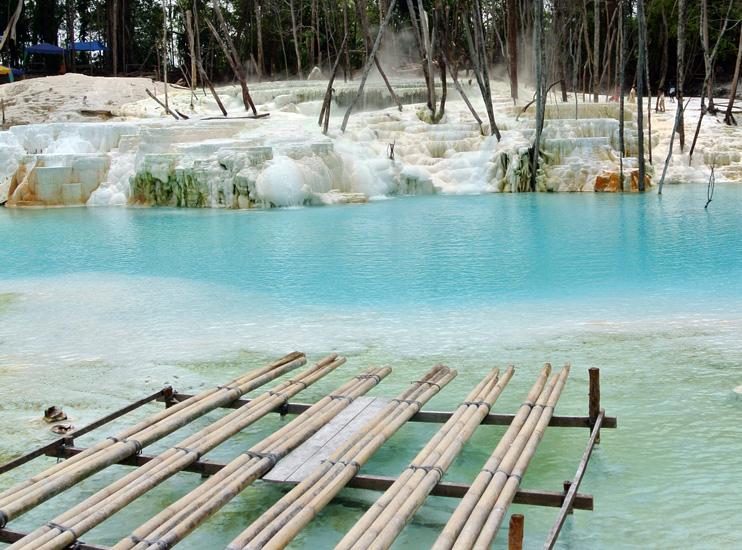 lagoon-bamboo