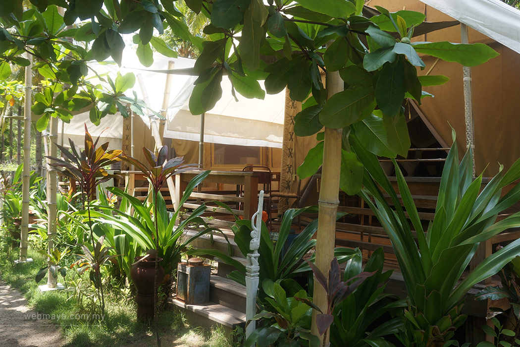 Camping in style at La Cocoteraie Ecolodge