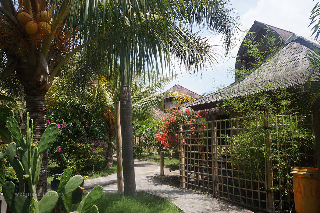 The surrounding compound of Coconut Dream Bungalow