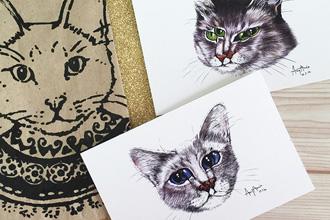 Amy Amin Cat Series